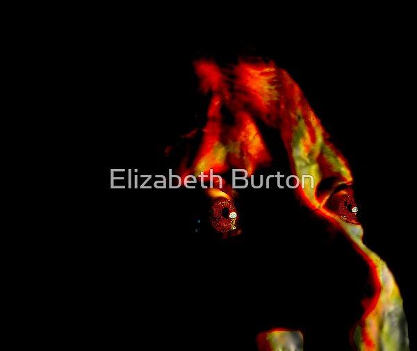 Not Alone by Elizabeth Burton