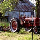 FARMALL by DarrellMoseley