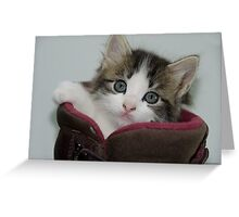 What do you mean my face is dirty?  Greeting Card