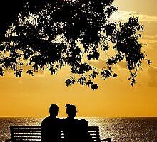 Spring Silhouette by Digitalbcon