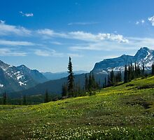 Highline Trail, Glacier NP by Fred Frank