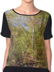 Canal Lands Park Chiffon Top