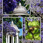 Parque Rodó by Digitalbcon