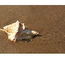 Beach Bubble Photographic Print