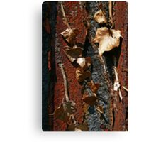 Two Kinds of Decay Canvas Print