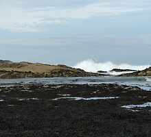 Breaking waves by Alan Thackray