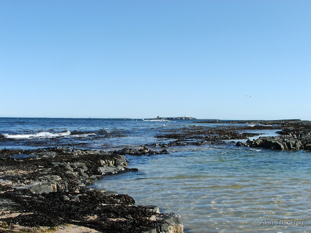 View of the Farne Islands by Alan Thackray