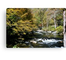 Little River Canvas Print