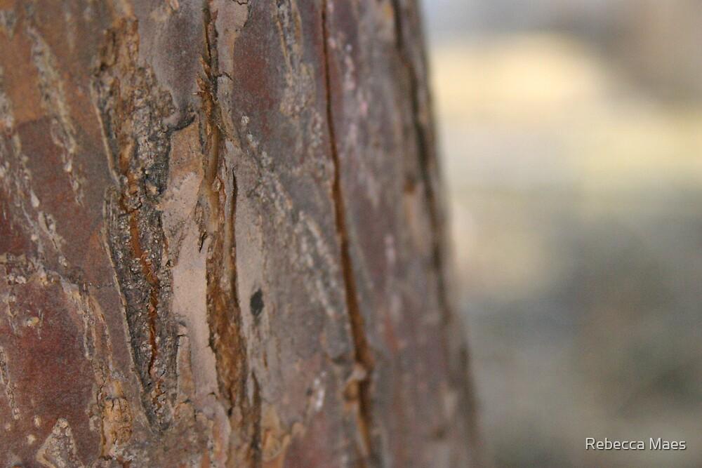 Crabapple Tree Bark by Rebecca Jakel