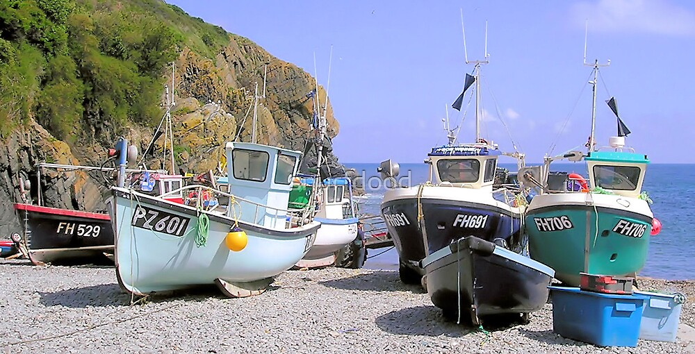 Cadgwith Fleet by snurfdood