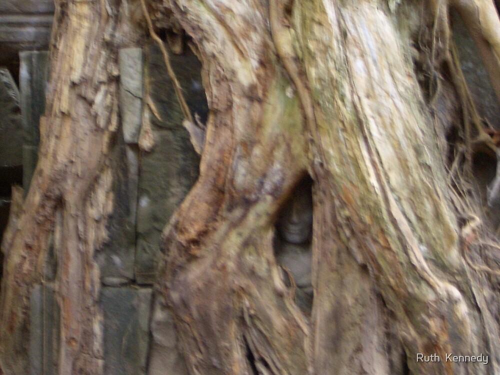Peek a booo  by Ruth  Kennedy