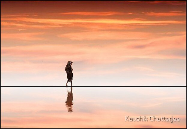 Walking on the Line by Kaushik Chatterjee