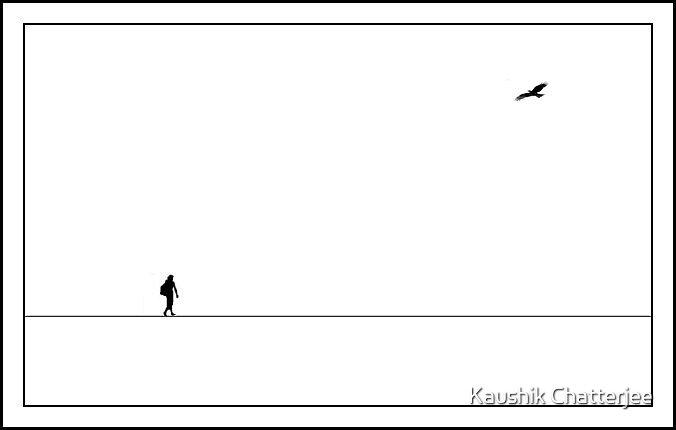 Traveler by Kaushik Chatterjee