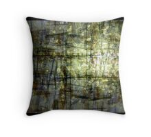 shining pond Throw Pillow