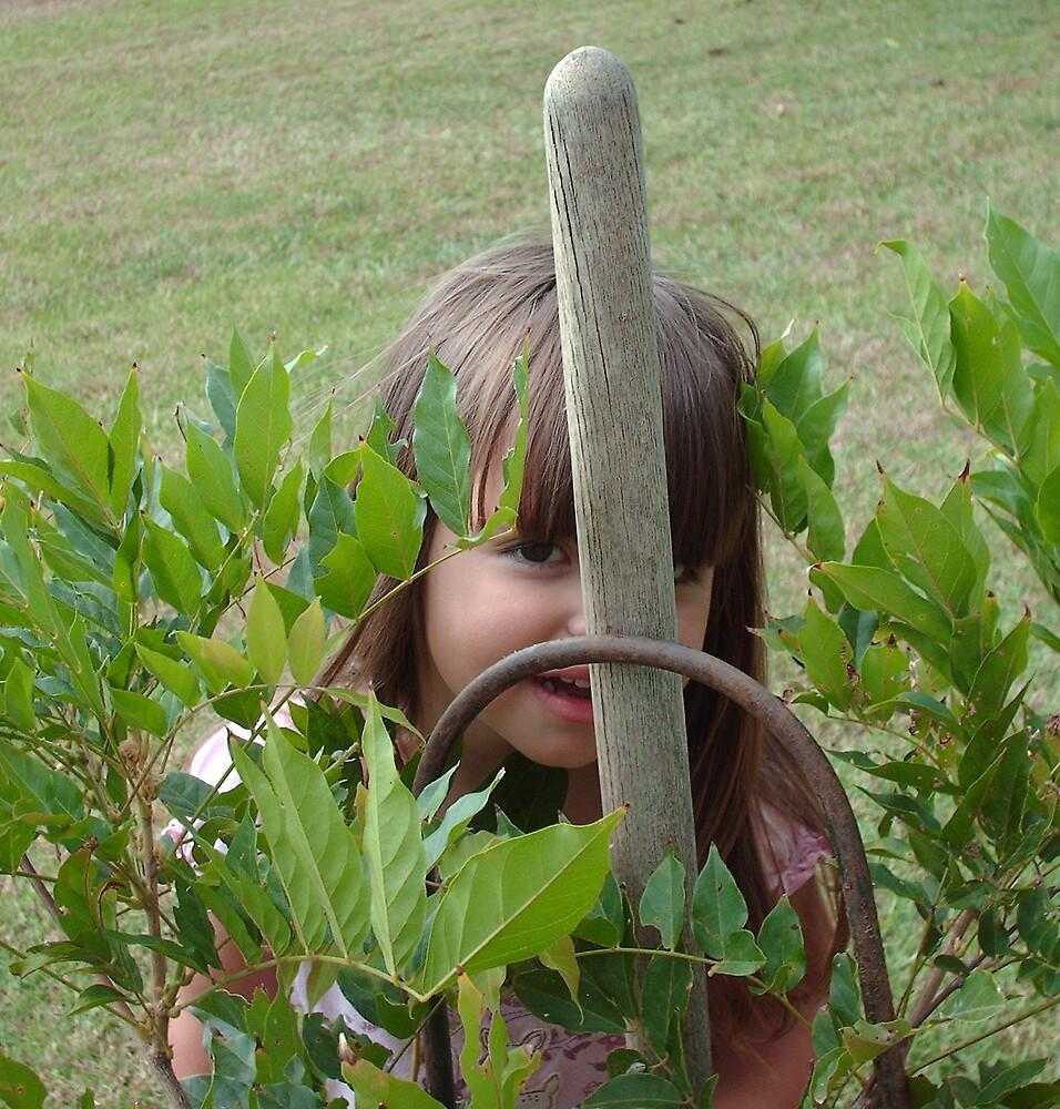 Peeking through the Jasmin Bush by peggyprescott