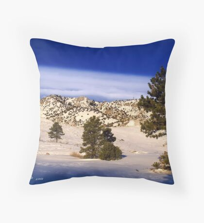 A Morning In The American West Throw Pillow
