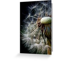 the beauty of small things Greeting Card