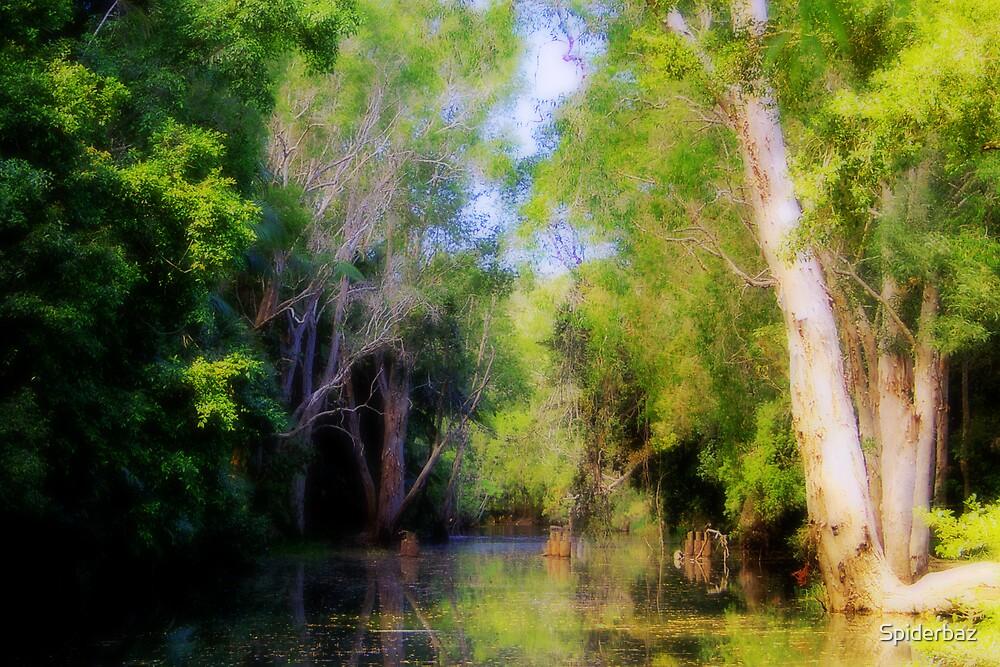 Creek by Spiderbaz