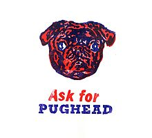 Ask for PUGHEAD Photographic Print