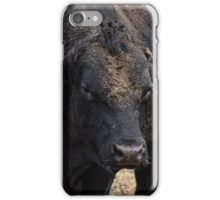 Dirty Face iPhone Case/Skin