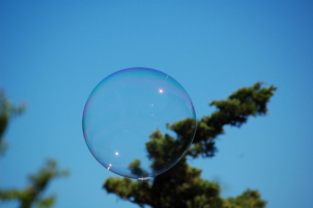 Bubble - Sooke Harbour by JoeBlogs