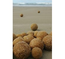Seagrass balls at Middleton Photographic Print