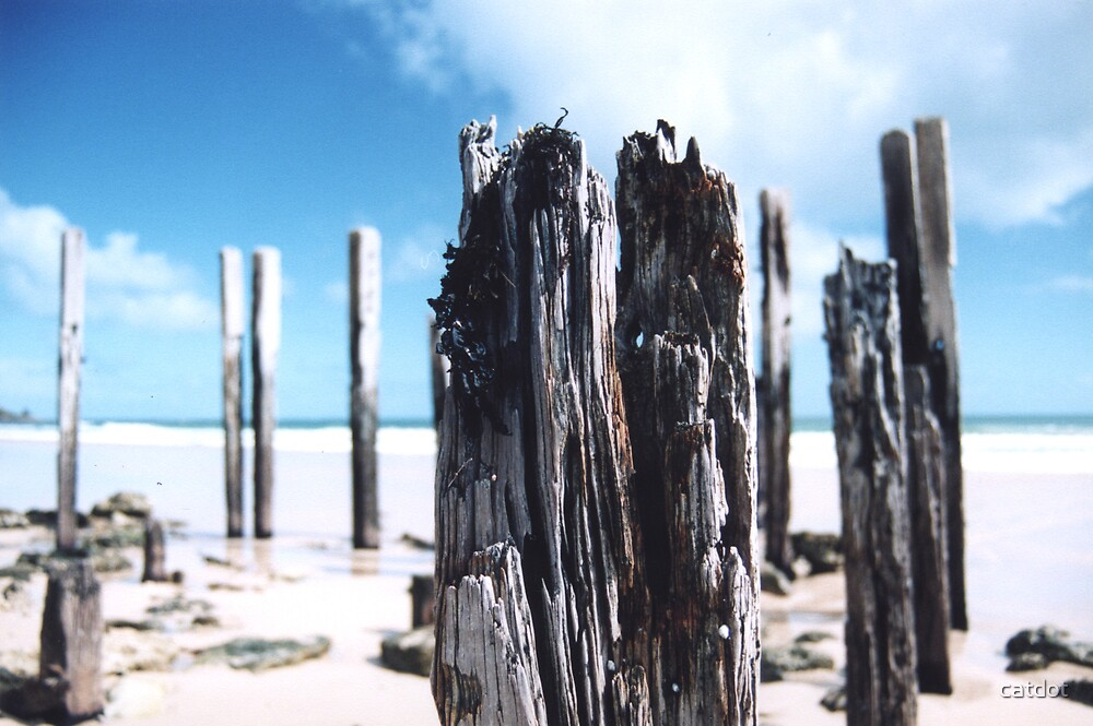 Port Willunga Jetty Posts by catdot