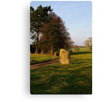 Long Meg Stone Circle Canvas Print