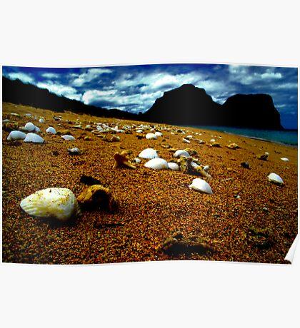 she sells sea shells on the sea shore Poster