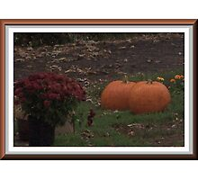 Pumpkins Waiting In the Night Photographic Print