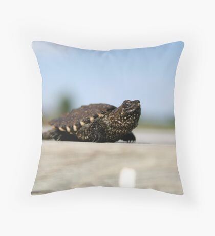 Little Spike Throw Pillow