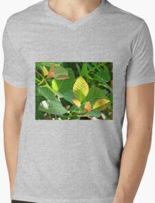 Backlit Leaves - Hyde Hall Mens V-Neck T-Shirt