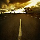 The Open Road by Will Barton
