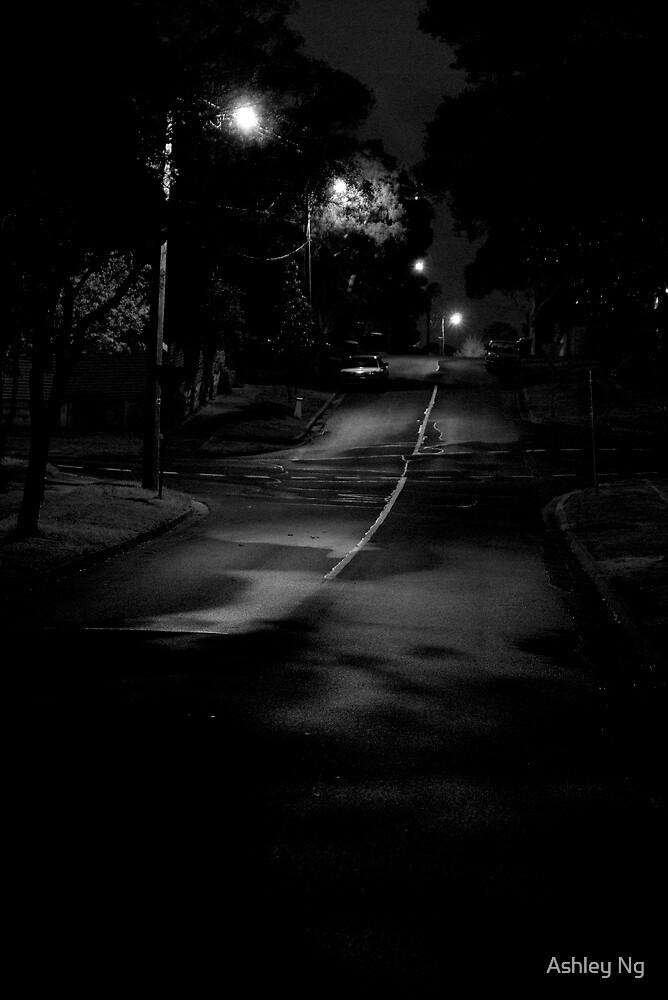 suburban street by Ashley Ng