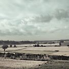 Sommer auf dem Land IV (summer at the countryside IV) by doubleblind