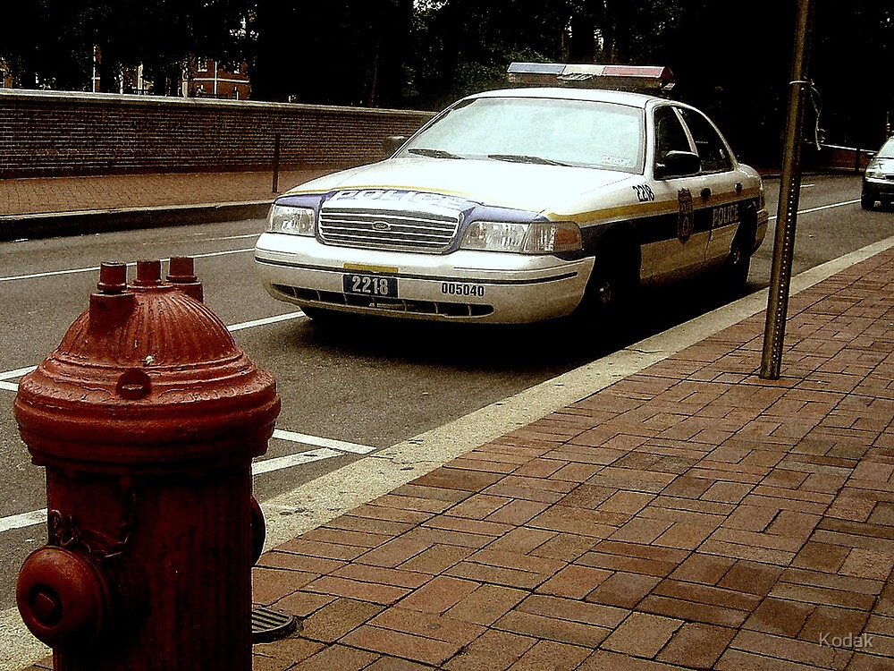 Street Patrol by Kodak