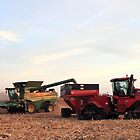 Harvest in Jefferson County by EBArt