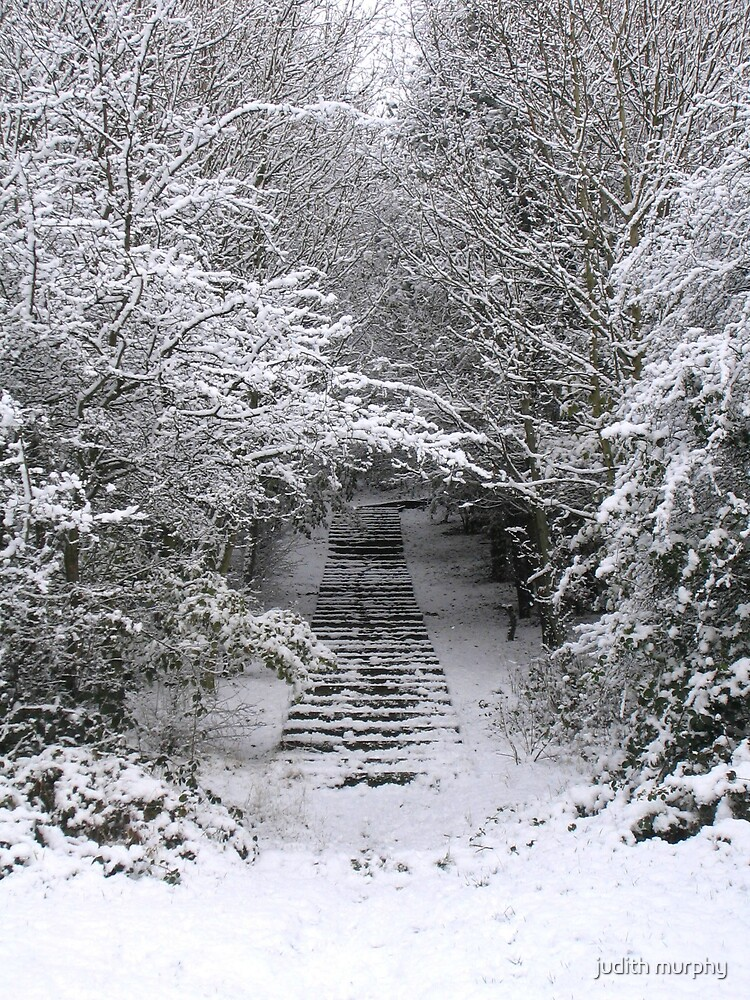 Snow steps by judith murphy
