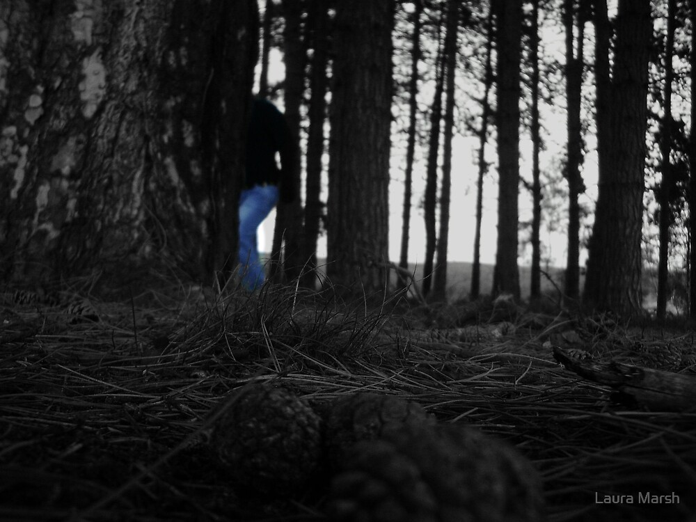 Stranger in the woods by Laura Marsh