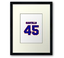 National baseball player Alberto Castillo jersey 45 Framed Print