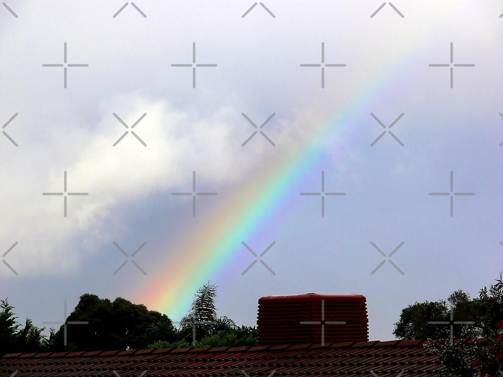 Rainbow  by Sandra Chung