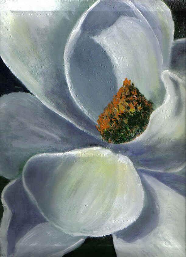 Magnolia Blossom ll by Eileen Kasprick