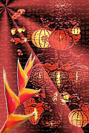 lanterns by Clare Davidson