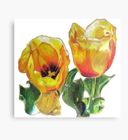Yellow Tulip Flower Drawing Canvas Print