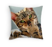 Zen With Catitude Throw Pillow