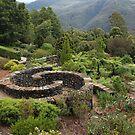 Blue Mountains Botanic Gardens by Chris Allen