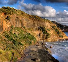 Maori Bay New Zealand by Omakiwi