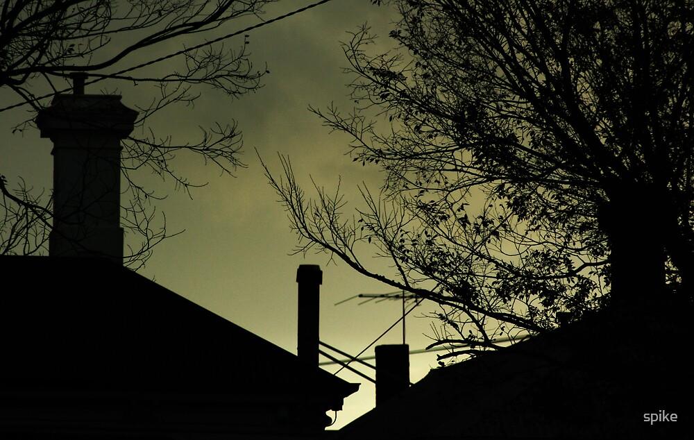 Winter Light by spike