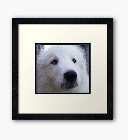 SNOWFLAKES :) Framed Print