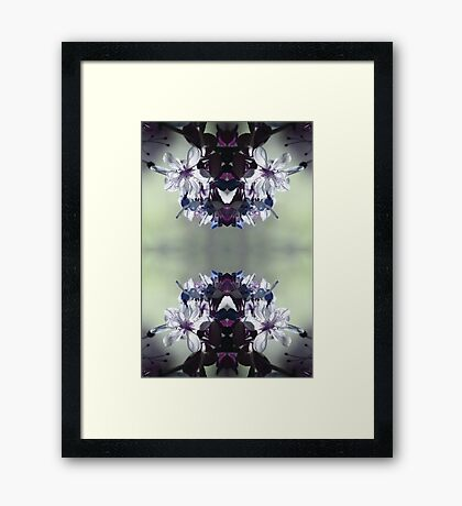 Moonlit Reflection Framed Print